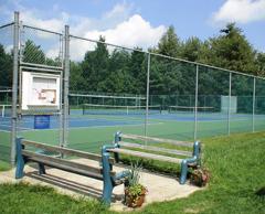 tennis_DSC01672